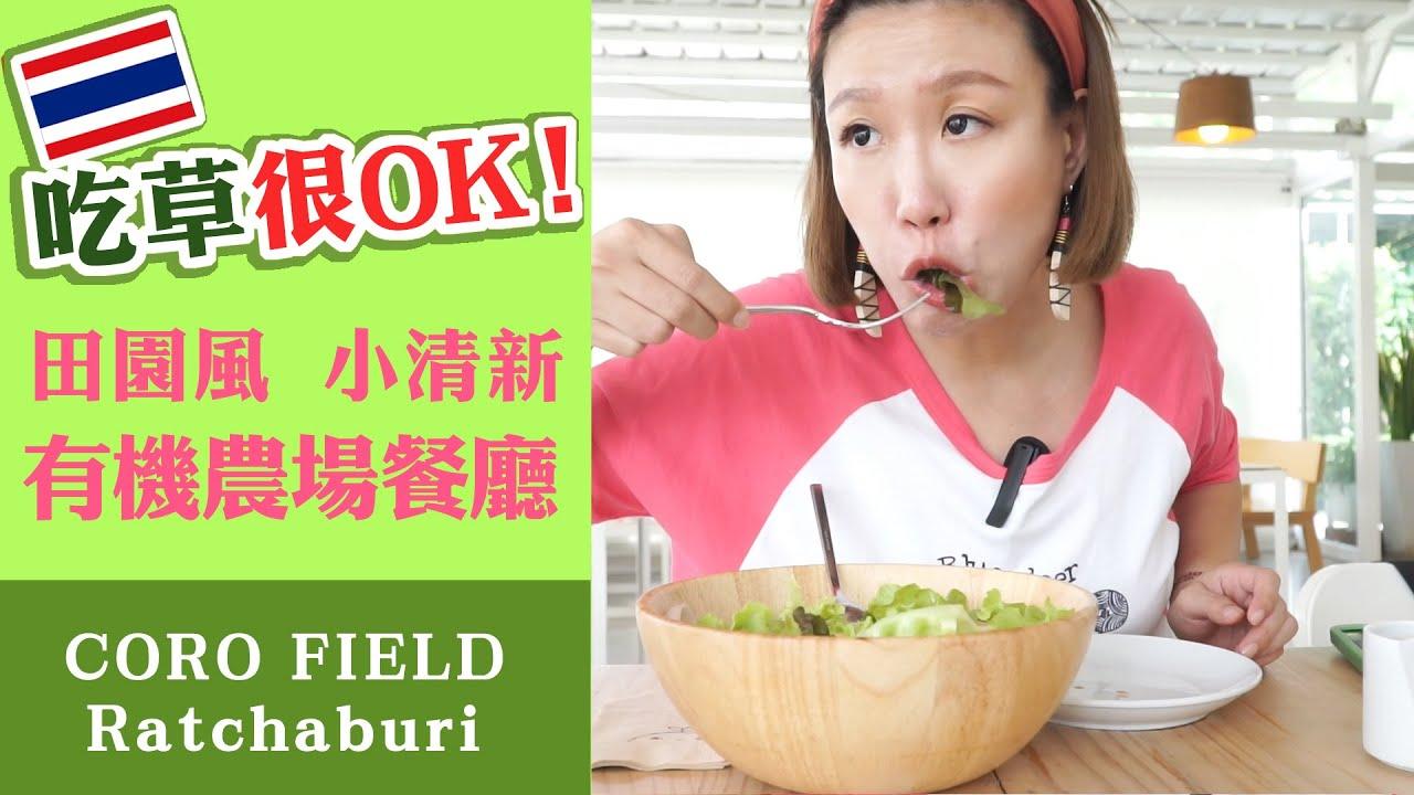 吃草很OK!泰國田園風小清新有機農場餐廳《CORO FIELD》 招牌哈密瓜甜點 親子景點 拉差汶里Ratchaburi(中文字幕)
