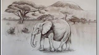 Speed Drawing Elefant