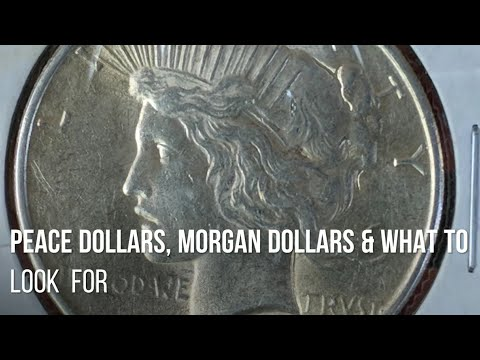Silver Dollars And What To Look For.  Selectively Stacking Peace & Morgan Junk Silver Dollar Coins.