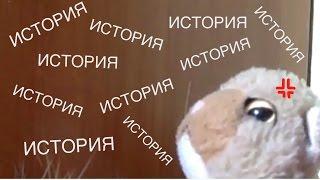 The Cat Collection: типичные котята #5-типичный Тедди)