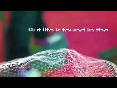 Royal (Lyric Video)