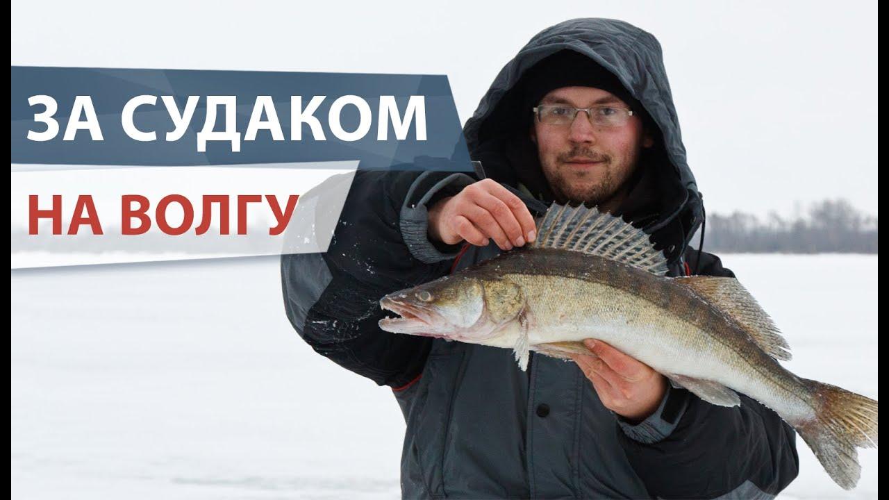 podvodnaya-ohota-na-sudaka-srednyaya-volga-video