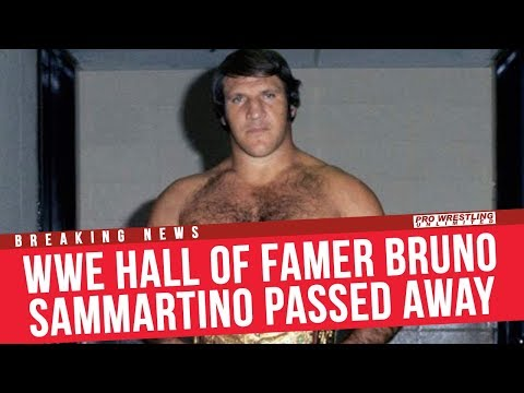 BREAKING NEWS: WWE Hall Of Famer Bruno Sammartino Passed Away At The Age Of 82
