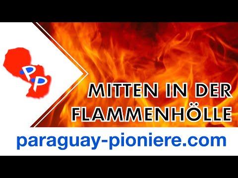 """Aus der """"Feuerhölle"""" Südamerikas - aktueller Bericht"""