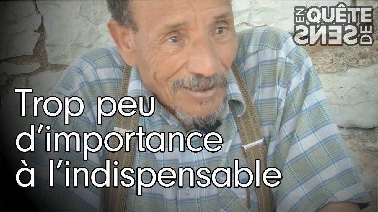 """Pierre Rabhi : """"Trop peu d'importance à l'indispensable"""""""