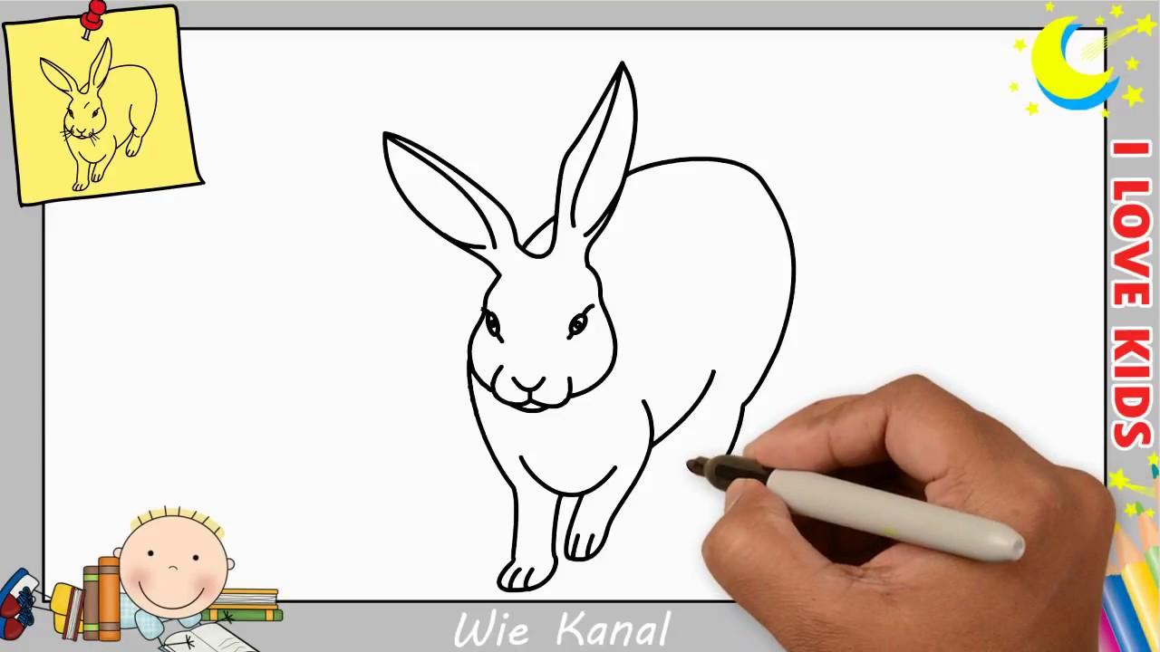 wie zeichnet man ein kaninchen hasen schritt f r schritt f r anf nger kinder 4 youtube. Black Bedroom Furniture Sets. Home Design Ideas