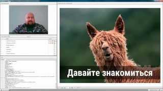 eLama.ru: Анализируем рекламу и повышаем ее эффективность с помощью Метрики 2.0
