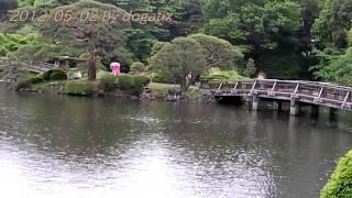 Video Japan Trip 2012 Tokyo Shinjuku Gyoen Park Japanese Garden kaminoike (3) download MP3, 3GP, MP4, WEBM, AVI, FLV Agustus 2018