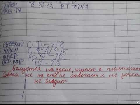 «Училку-неуча» отстранили от преподавания в 48-й школе Владивостока