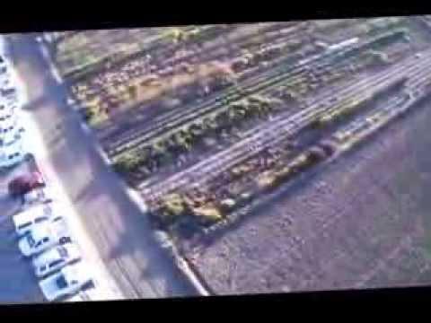 Drone NMSU Organic Field lg