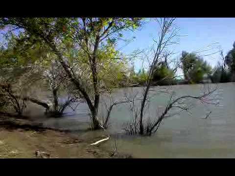 Fishing knights landing youtube for Knights landing fishing report