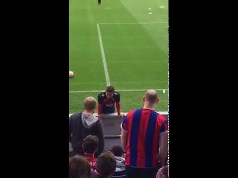 Yohan Cabaye apologises to Crystal Palace fan he hit during warm up