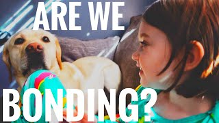 Is Braylee and Norton Bonding? | Painting & Kittens Day