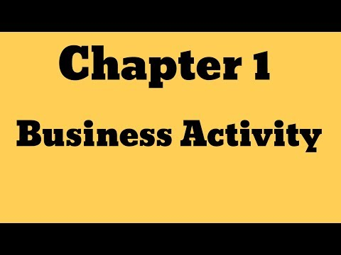 "IGCSE Business Studies _Chapter 1 ""Business Activity """