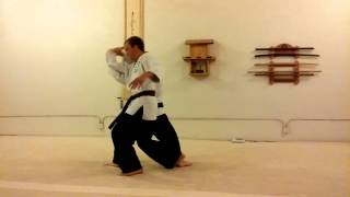 Shiho Nage with Martin and Cody