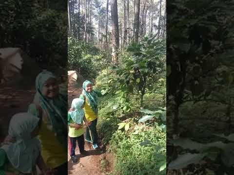 Naik Ke Batu Kuda Gunung Manglayang Cileunyi Bandung