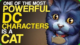 One of the Most Powerful DC Characters is a Cat (The Perfect Choices for the The Lantern Corps)
