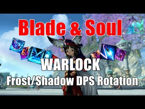 blade and soul soul fighter guide