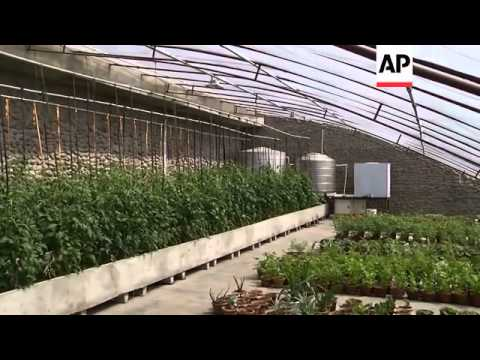 A cheap and low-tech renewable energy source is finally making daily life in North Korea bearable. T