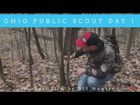 Public Land Scouting Tips | Part 1 (Ohio)
