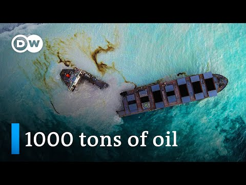 Mauritius oil spill: Grounded Japanese ship splits in two | DW News
