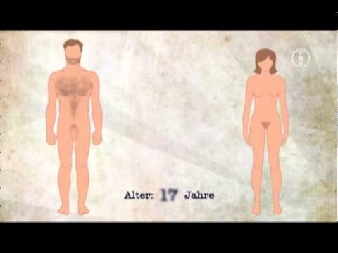 4 Wesentliche Hormone fr mnnlich zu weiblich Brust