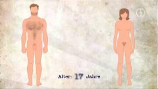 Repeat youtube video FWU - Entwicklung der Geschlechtsmerkmale: Vom Kind zum Erwachsenen