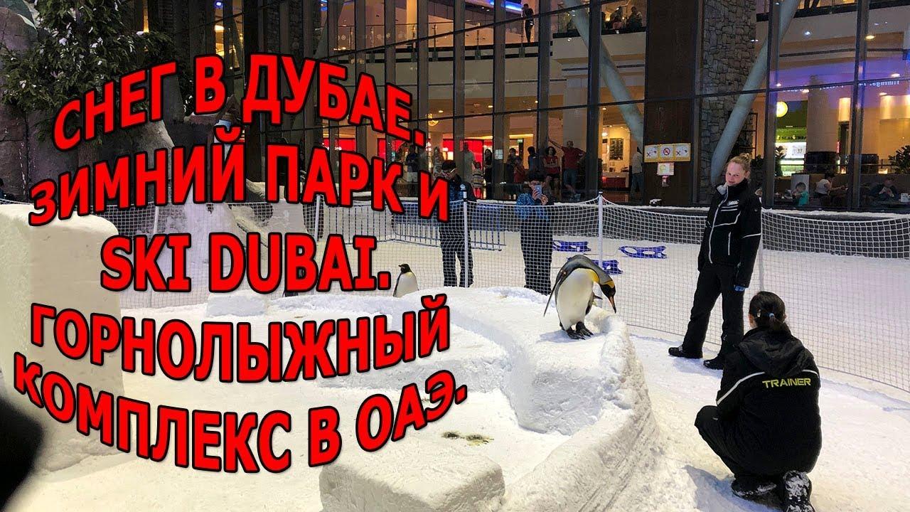 Снег в Дубае|Зимний парк и Ski Dubai