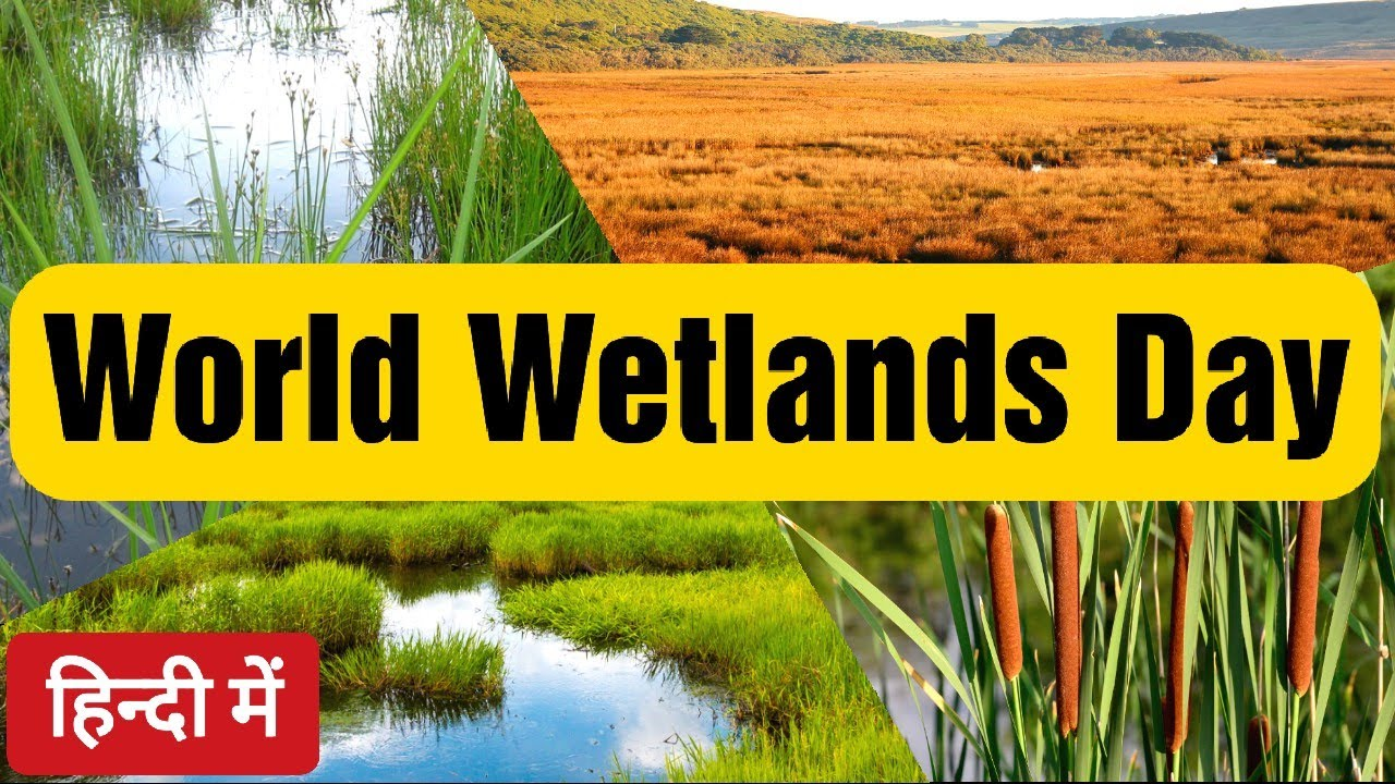 Download World Wetlands Day 2021 in Hindi | World Wetlands Day 2021 Theme | Ramsar Convention in Hindi