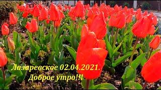 Доброе утро 02 04 2021 ЛАЗАРЕВСКОЕ СЕГОДНЯ СОЧИ