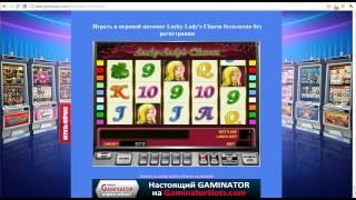 видео gaminator besplatno