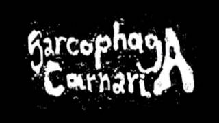 Sarcophaga Carnaria - 7 Untitled Tracks