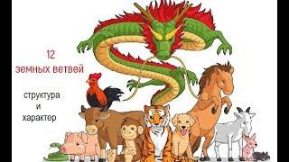 12 земных ветвей китайского гороскопа