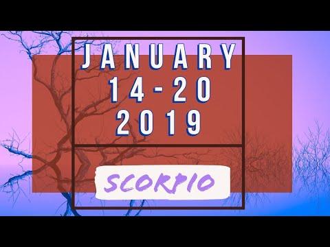 scorpio tarot weekly 14 to 20