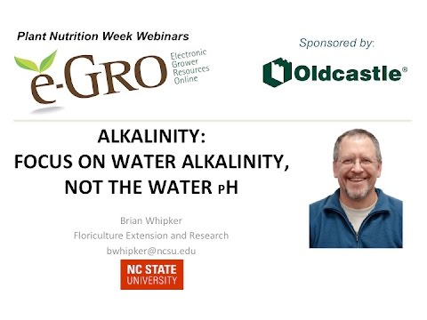 Alkalinity: Focus on the Water Alkalinity, Not the Water pH