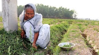 Chachi Shaak Recipe village Style by Grandmother | Unknown Recipes | Village Food