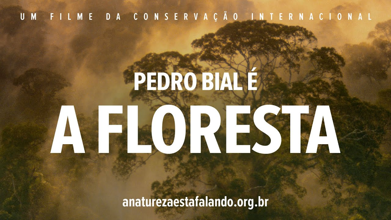 A Natureza esta Falando | Pedro Bial é A Floresta