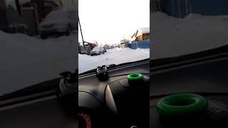 Собака слушает музыку в машине