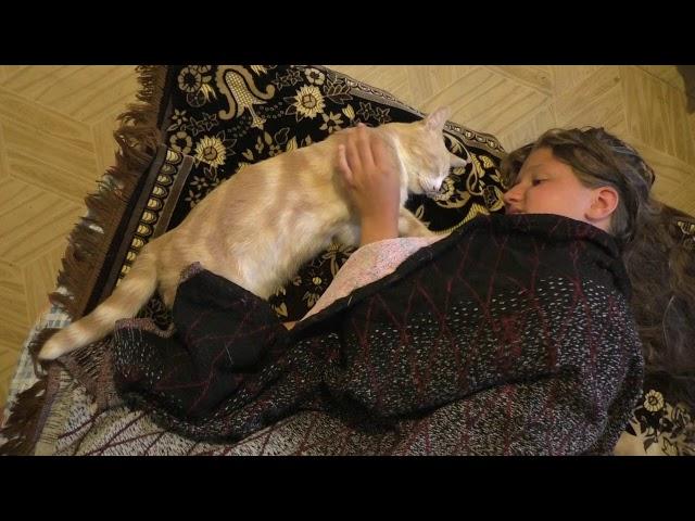Изображение предпросмотра прочтения – ЕвгенияПолухова читает произведение «Кот поёт, глаза прищуря…» А.А.Фета