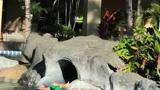 하와이 쉐라튼 와이키키…