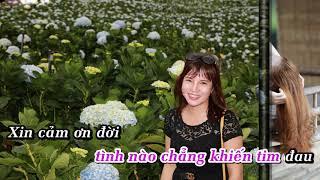 Xin Lỗi Tình Yêu karaoke - Sáng tác : Trịnh Lương Thành
