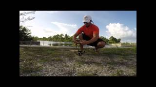 Fly Fishing Spillway Snook