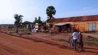 Famine in South Sudan: Camps in the Catholic diocese of Tombura-Yambio