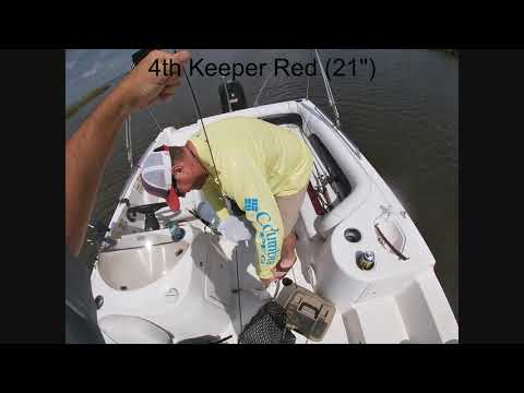 Sabine Lake Texas 40+ Redfish