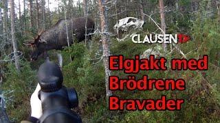 Repeat youtube video Elgjakt med Brödrene Bravader på Clausen TV