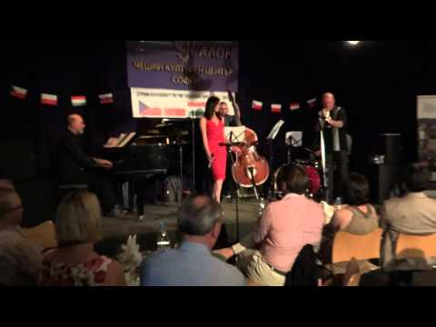 Jazz concert in Czech center 2012 part2