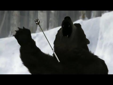 CGI Bears In Anime