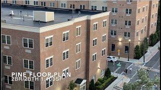 H2 Pine Floor Plan