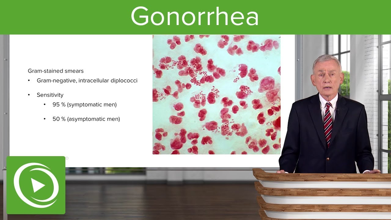 Gonorrhea – Infectious Diseases | Lecturio