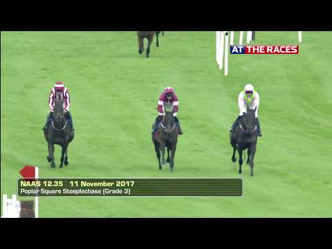 The Paddy Power Dial-A-Bet Brown Lad Handicap Hurdle (Grade B) |  Naas | 11th November 2017
